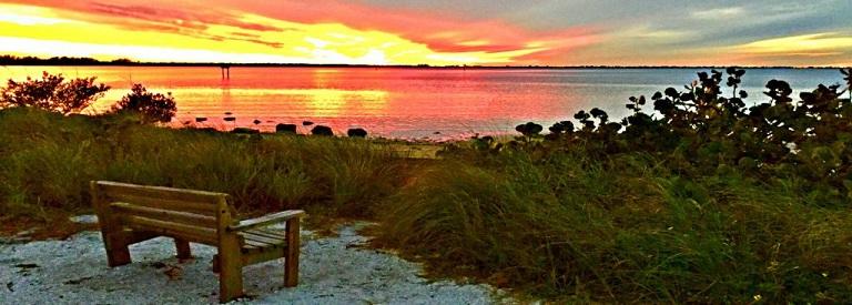 Emerson Point Preserve is a 365 Acre Preserve in Palmetto