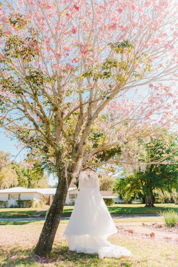 Lace Ball Gown Wedding Dress Called Mallory Dawn by Maggie Sottero Hanging on Tree at Real Wedding