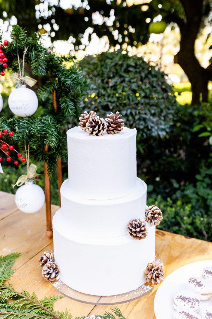 Minimalist White Winter Wedding Cake with Pine Cones