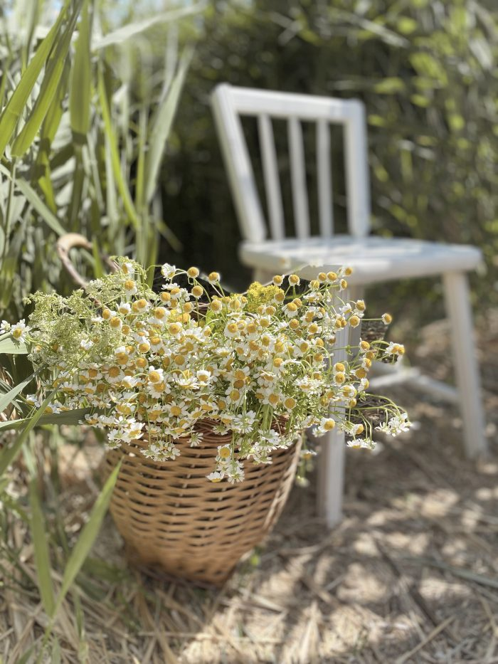 Cottagecore Chair and Basket of Wild Flowers for Bridal Shoot
