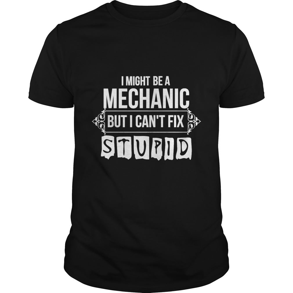 Imight Be A Mechanic But I Cant Fix Stupid Plus Size Up To 5xl