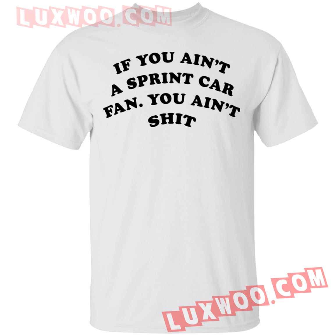 If You Aint A Sprint Car Fan You Aint Shit Shirt