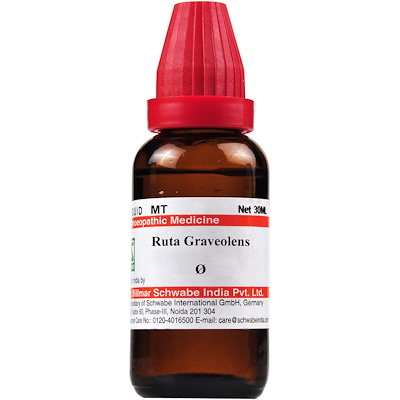 Medicines Mall - Willmar Schwabe India Ruta Graveolens (Q) (30 ML) Mother Tinctures / MT