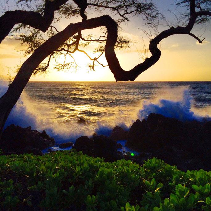 four-seasons-hotel-maui-hawaii