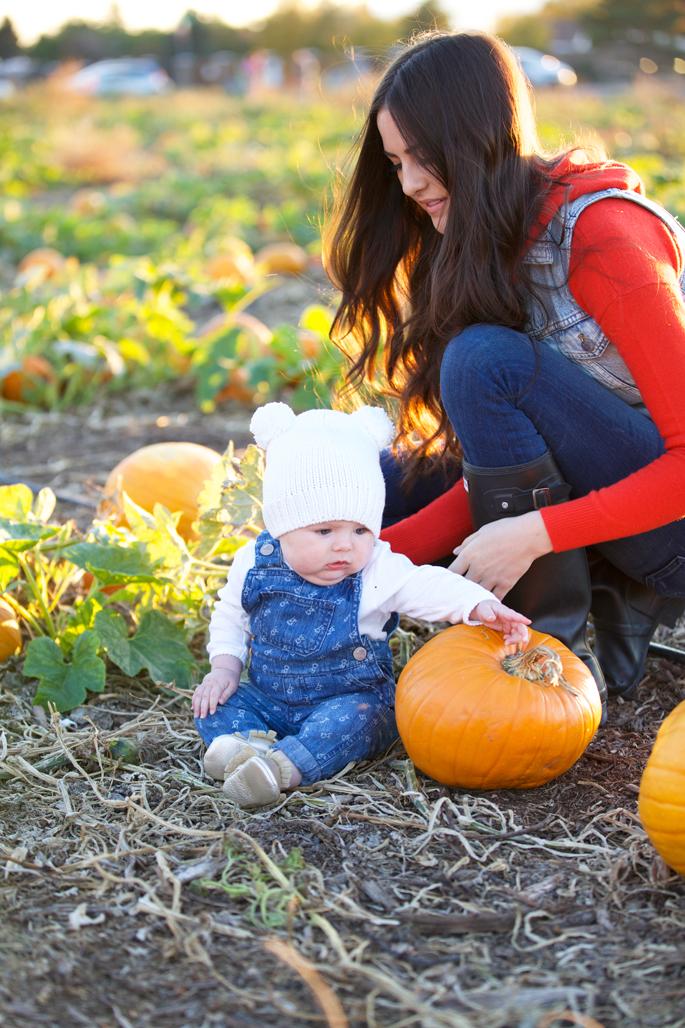 pumpkin-patch-photo-shoot