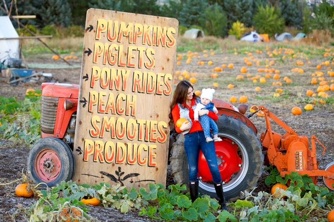 the-pumpkin-patch-utah