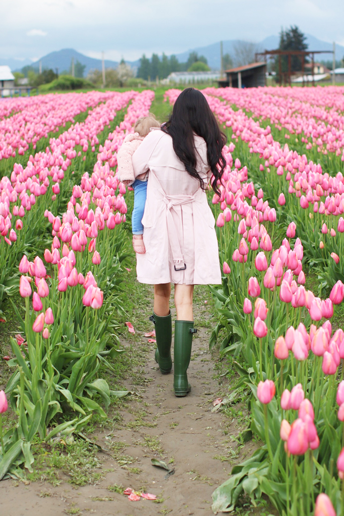 skagit-tulip-festival-washington