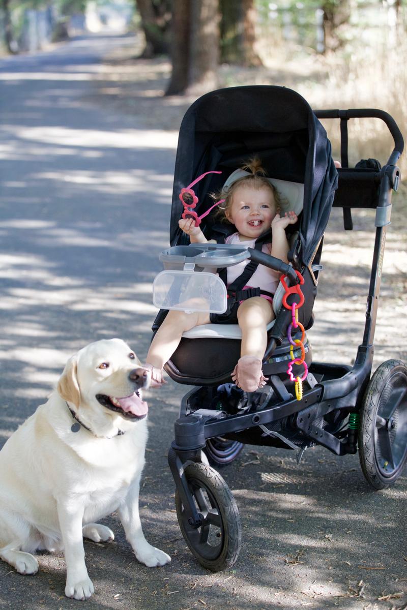 orbit-baby-running-stroller - 2