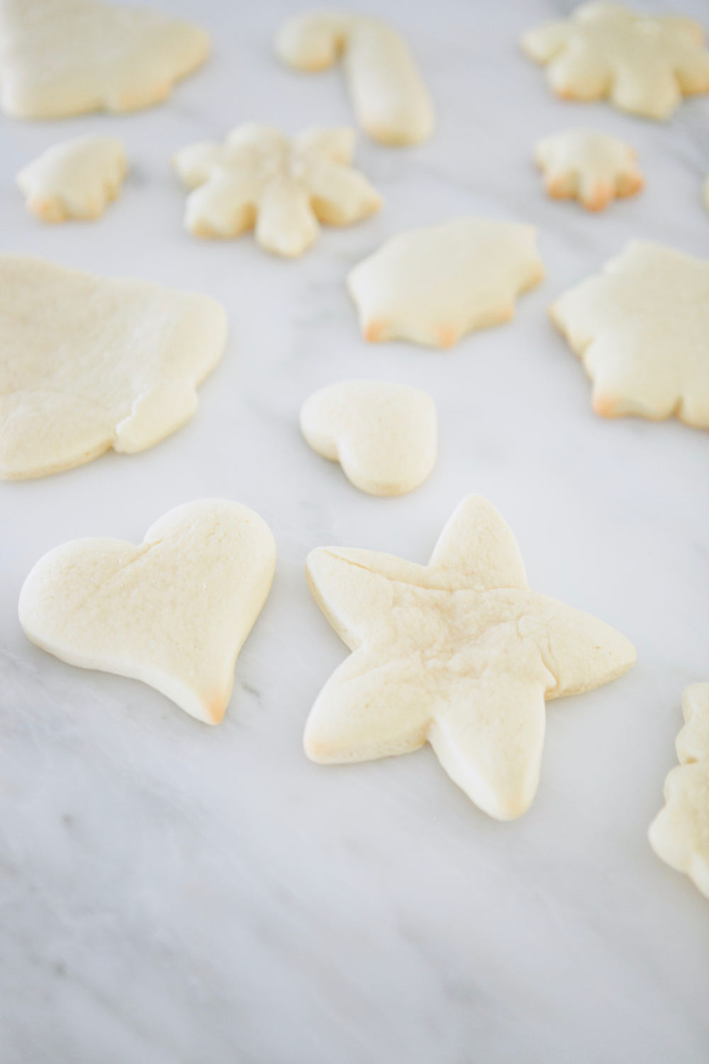 best-christmas-sugar-cookies-16