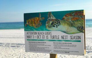 Navarre Beach Sea Turtle Conservation Center