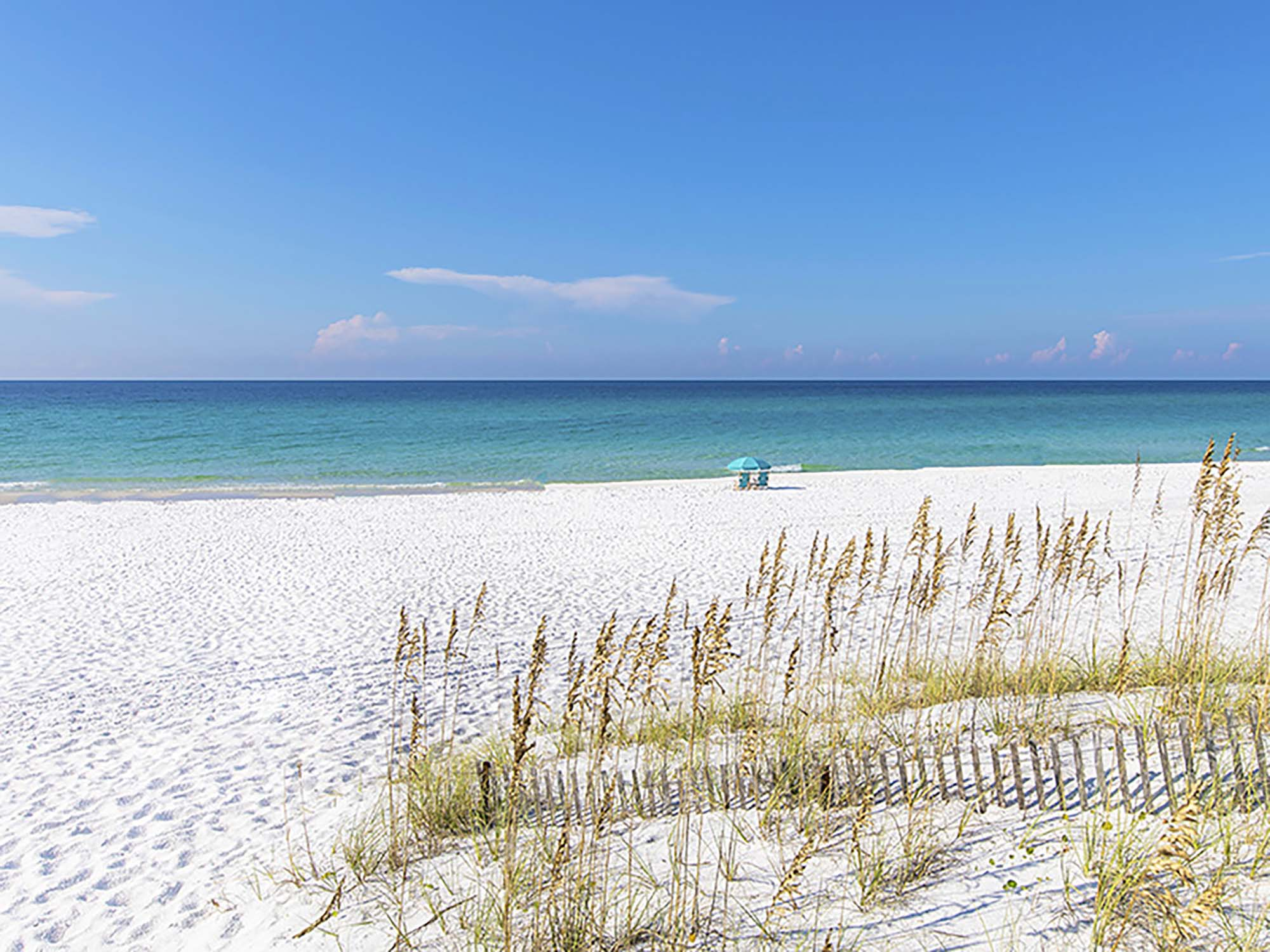 4 Reasons to Book Your Spring Vacation