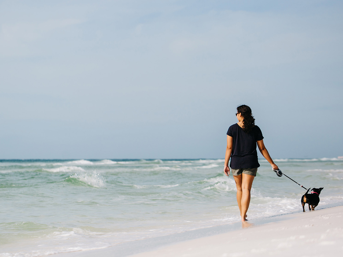 Dog Friendly Beaches Along the Gulf Coast