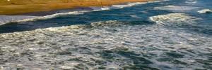 ocean1-300x100_2