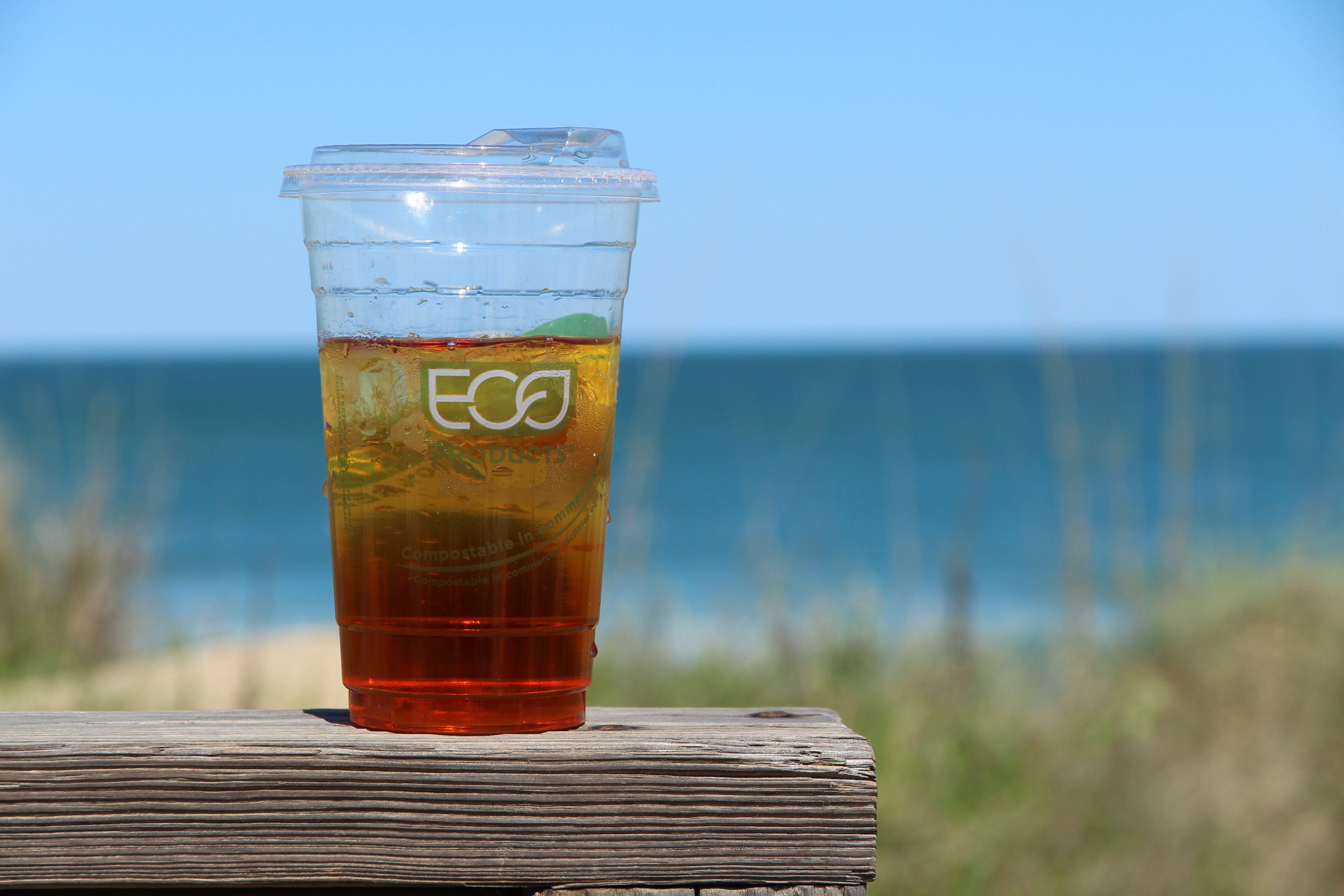 Eco Biodegradable Cup