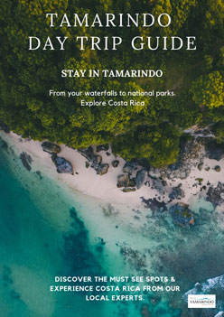 Tamarindo Day Trip Guide