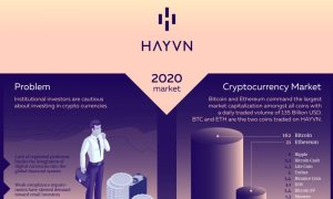 See Why HAYVN is a Breakthrough for the Crypto Market