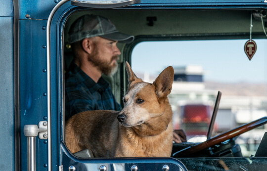 Brian and his dog in their blue truck cab.