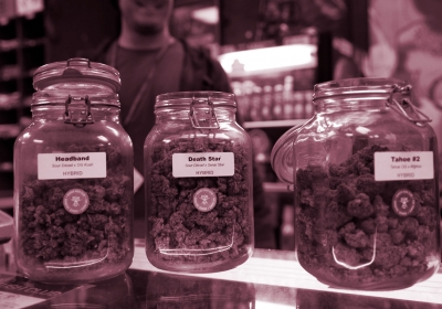 Why There Aren't More CBD Cannabis Strains