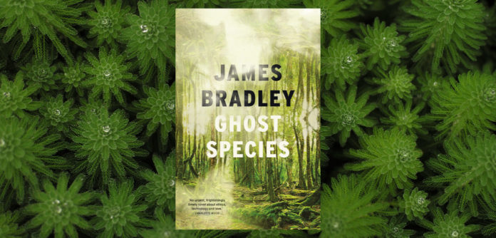 "The Art and Science of Resurrection in ""Ghost Species"" – Chicago Review of Books"